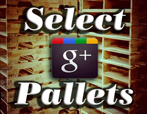 Select Pallets on Google +